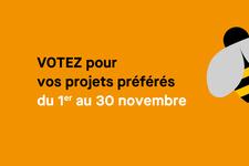 BP-vote2020.jpg